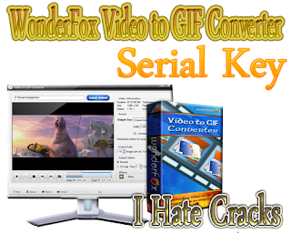 WonderFox Video to GIF Converter Download With Serial Key
