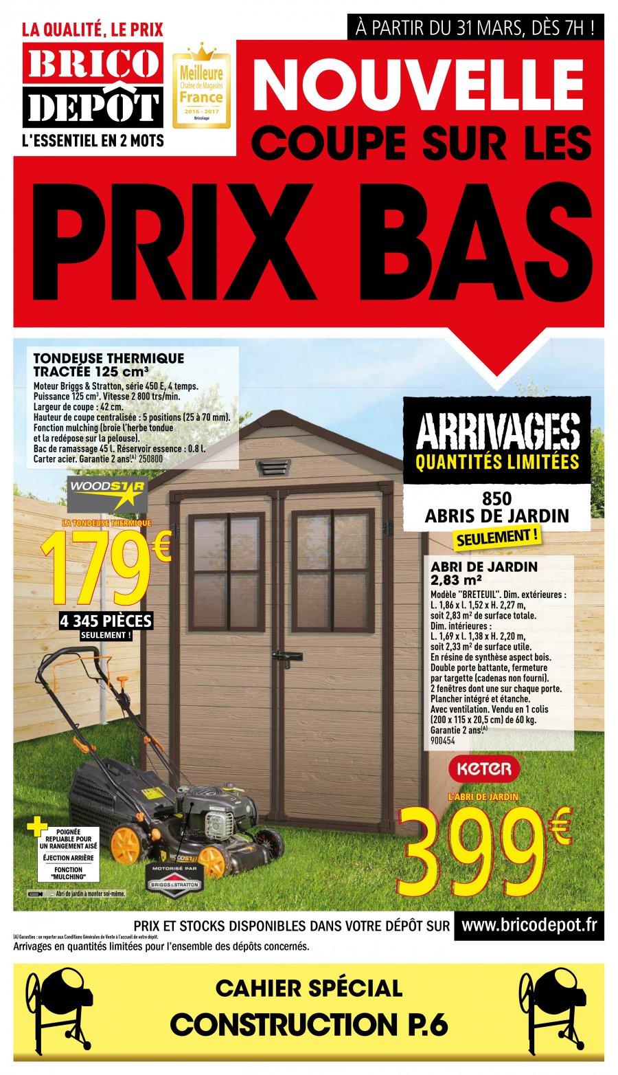 Catalogue Carrefour Abris De Jardin Affordable Abri De Jardin  # Abris De Jardin A Brico Depot