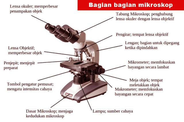 image: Bagian bagian mikroskop