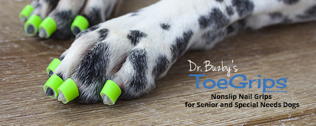 Dr. Buzby's ToeGrips Nonslip Nail Grips for Senior and Special Needs Dogs