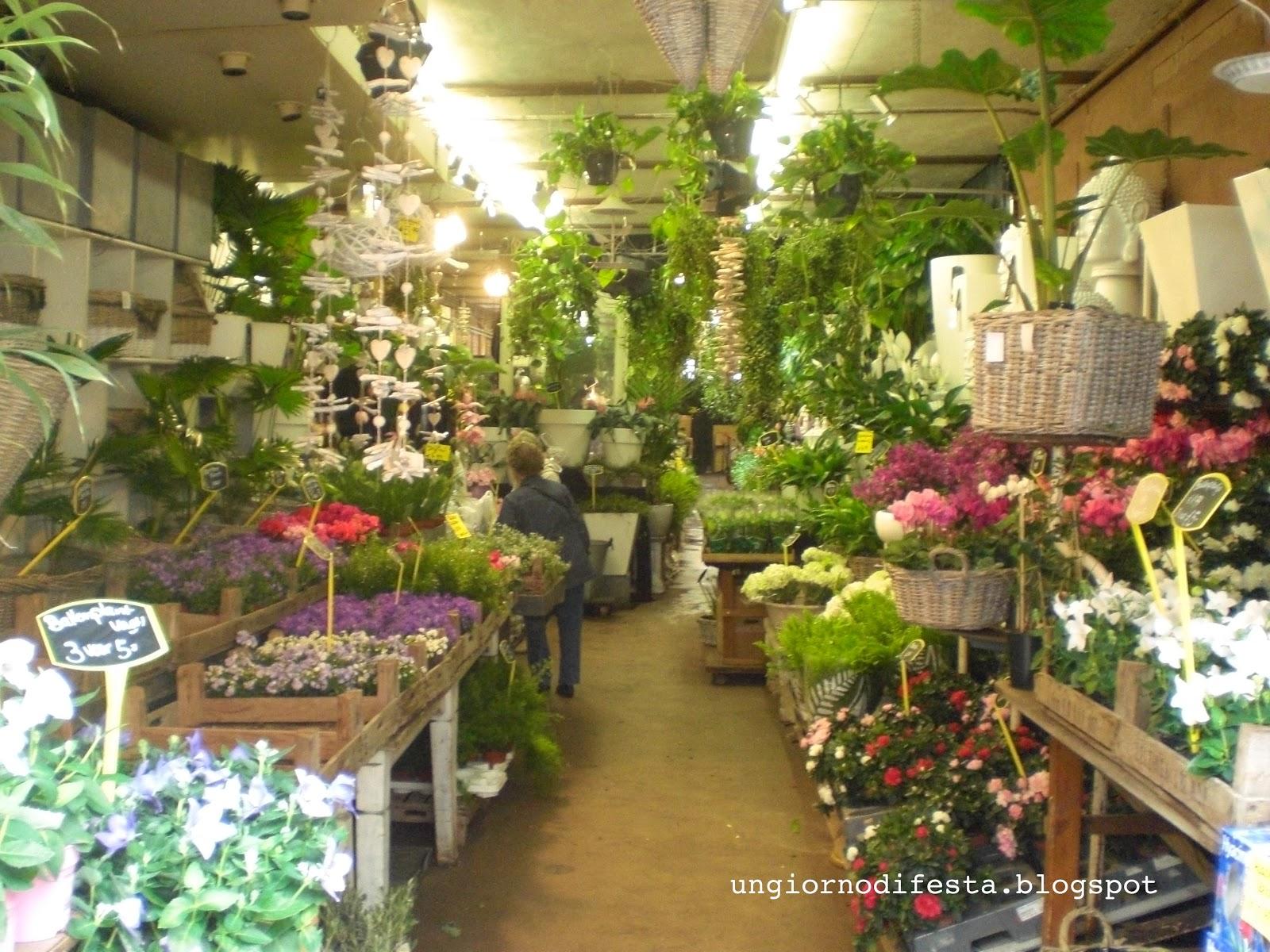 Arredamento per negozio di fiori ks84 pineglen for Negozi arredamento design milano