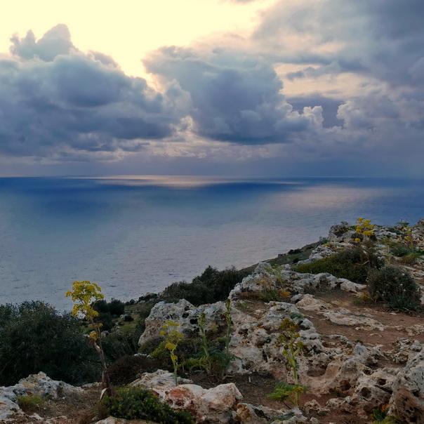 Dingli, Cliffs, Küste, Fels, Fenchel, wild, düster, Wolken, Meer, Licht