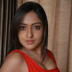 Anjana hot wallpapers in tight red t shirt