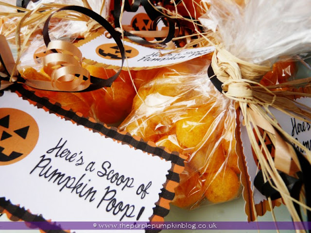 Pumpkin Poop! {Crafty October} at The Purple Pumpkin Blog