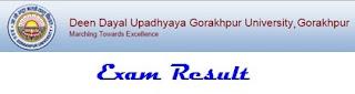 DDU Gorakhpur University Result 2021