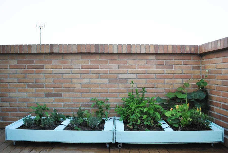 http://www.mylittlebrunch.com/2014/06/diy-como-hacer-un-huerto-urbano-con.html #DIY #huertourbano #huertoconpalé