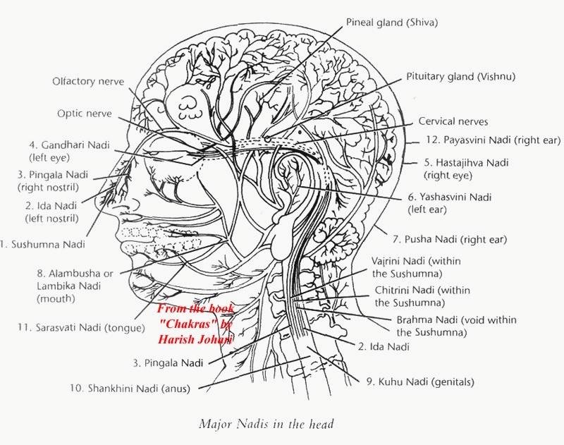 MOKSHADHARMA / Filosofia e Ciência da Índia