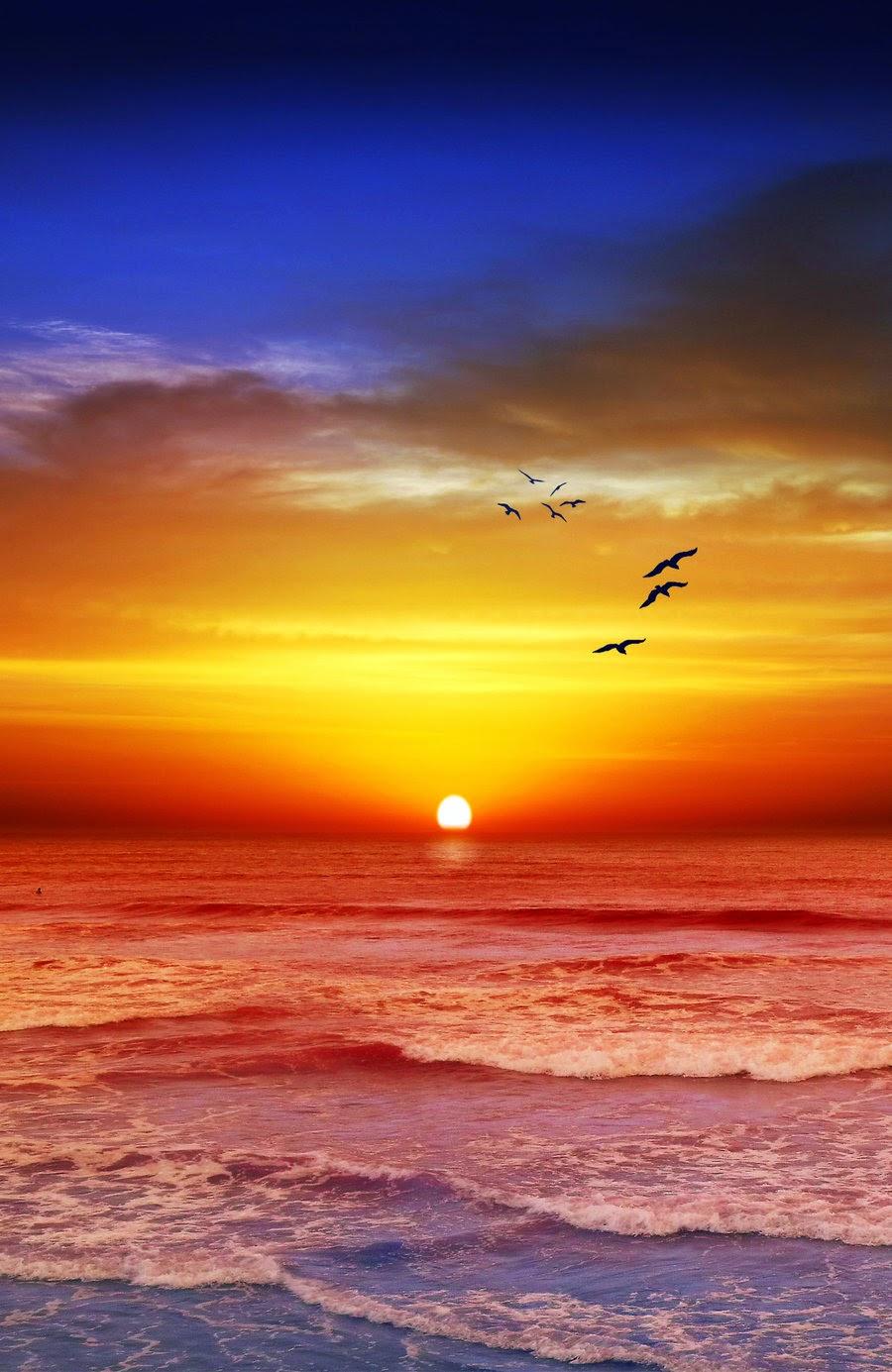 Sunset Beach  Melbourne, Victoria, Australia
