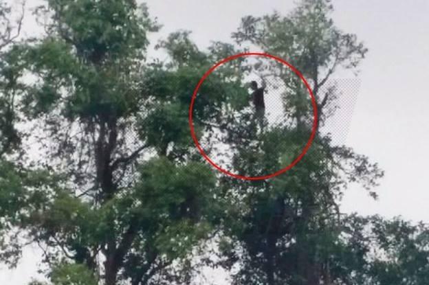 Pemuda Kemboja tinggal di atas pokok di Kuala Terengganu