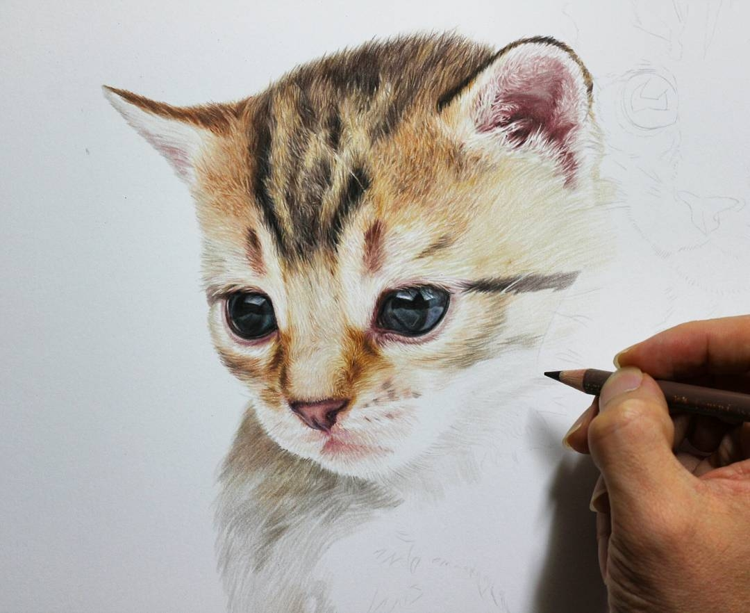 09-Kitten-WIP-Jae-Kyung-Cute-Kittens-and-Puppies-Drawings-www-designstack-co