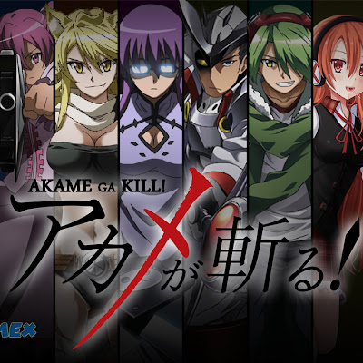 Akame Ga Kill Audio Castellano 12/24 [MEGA] [MediaFire] | Version HD 720p