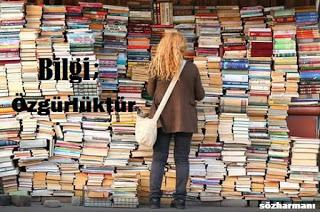 altın sözler, bilgi, bilgi ile ilgili sözler, bilgi nedir, bilgi nedir felsefe, bilginin anlamı, ders notları, ödev notları, resimli sözler bilgi, nedir.org, kaç çeşit bilgi vardır, bilgi sözlük anlamı