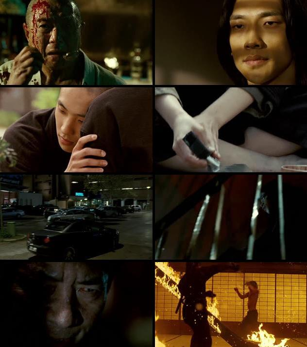 Ninja Assassin 2009 Dual Audio Hindi 480p BluRay