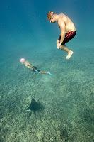 http://www.tropicallight.com/swim1/16dec18sm/16dec18sm.html