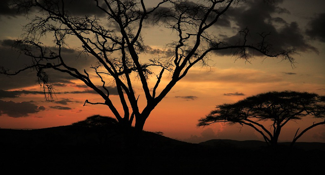 Tanzania Tanah ajaib di Afrika