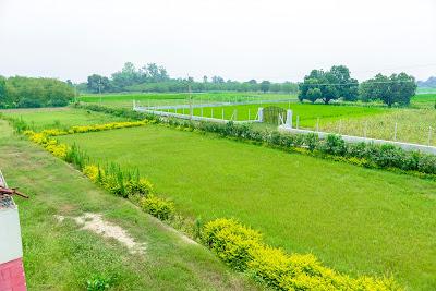 Spring Dales Academy High School Pratapgarh