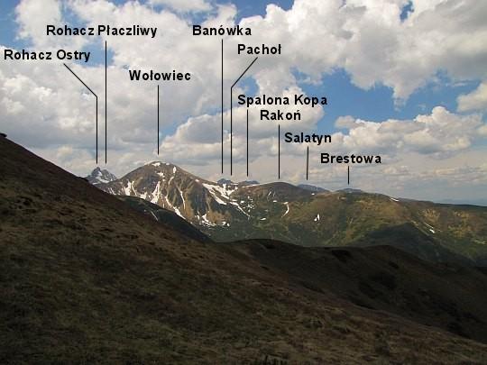 Panorama zachodnia z Trzydniowiańskiego Wierchu.