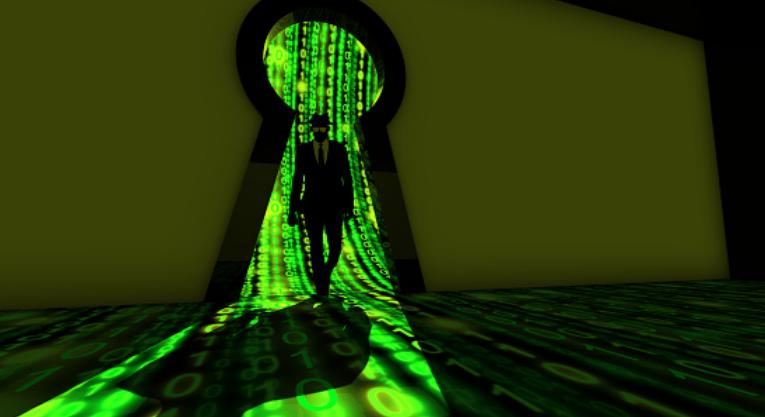 DataWrapper ProtoType 0.8 Database Disclosure