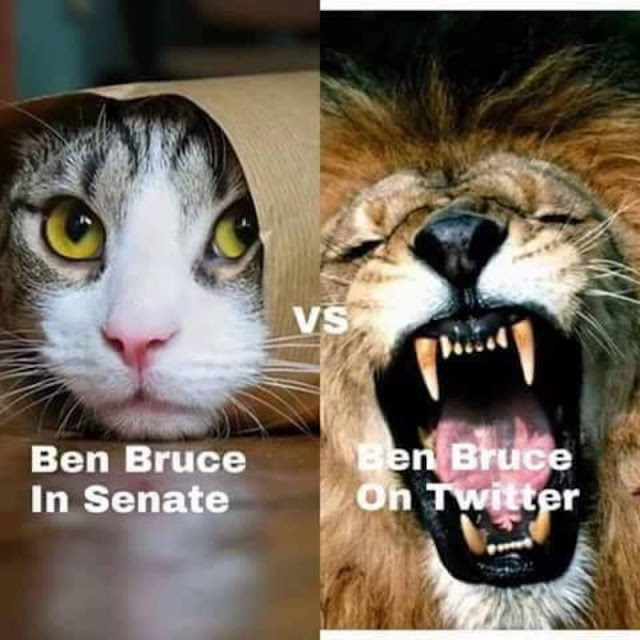 Peoples opinion on our distinguished Senator....Ben Bruce!!!
