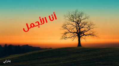 نادي غايا البولوني شجرة السنة