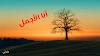 اختيار ملكة جمال الاشجار، نادي غايا البولوني