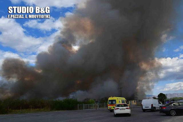 Μεγάλη πυρκαγιά σε τυροκομείο στο Άργος