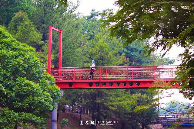 foto jembatan hutan kota bsd tangerang