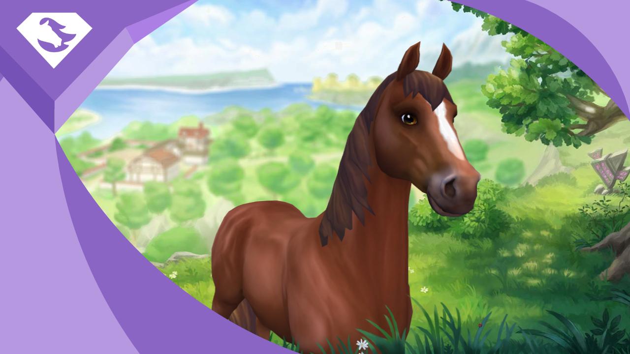 """Zupełnie """"nowy"""" koń startowy"""
