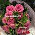 02 Φεβρουαρίου 🌹🌹🌹 Σήμερα γιορτάζουν οι: Υπαπαντή,Μαρουλία,Μαρούλα,Ρούλα