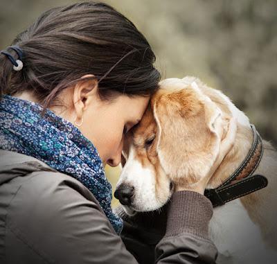 Mi perro no es mi hijo, pero yo soy su madre
