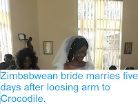 http://sciencythoughts.blogspot.com/2018/05/zimbabwean-bride-marries-five-days.html