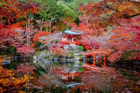 Templo Daigo-ji - Japón