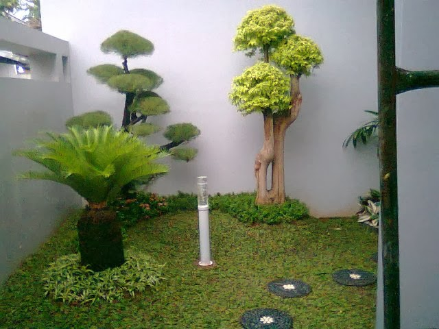 Sewa Tanaman Landscape Contoh Desain Taman Belakang Rumah