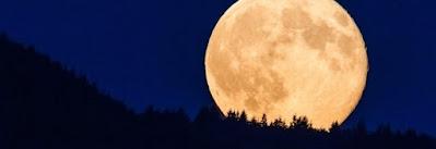 L'attrazione gravitazionale della Luna e della Terra