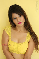 Cute Telugu Actress Shunaya Solanki High Definition Spicy Pos in Yellow Top and Skirt  0195.JPG