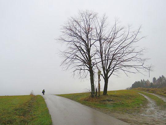 Przełęcz między Pępówką i Łyżką.