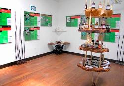 museo de plantas3