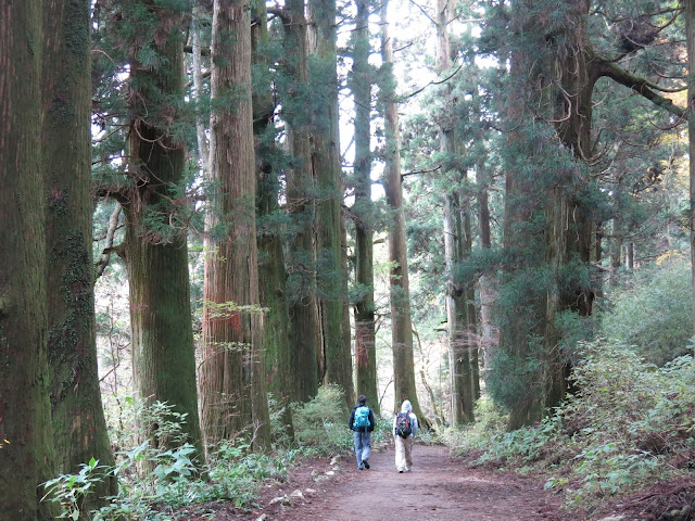 WALK JAPAN INTRODUCES TWO NEW WALKING TOURS