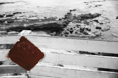 http://heather-kirk.artistwebsites.com/featured/beachside-warning-horizontal-bw-with-colorized-red-sign-heather-kirk.html