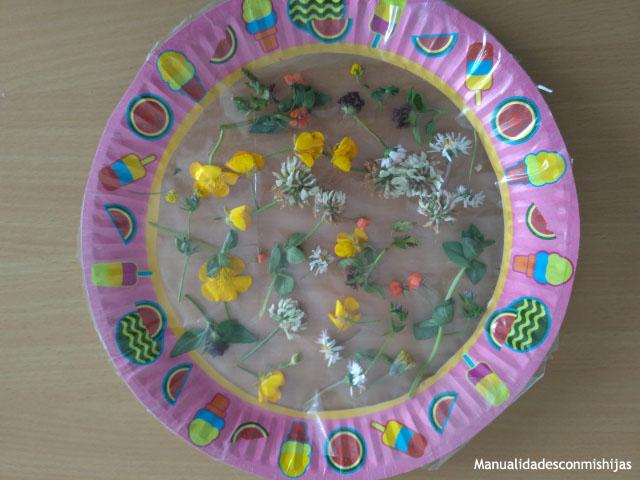 Cuadro-de-flores-silvestres-con-plato-de-carton-aeronfix
