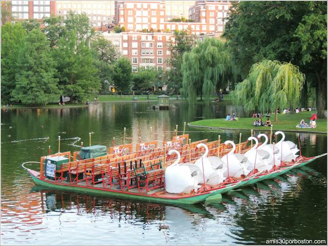 Verano en Boston - Boston Public Garden