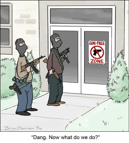 an argument against handgun bans in america