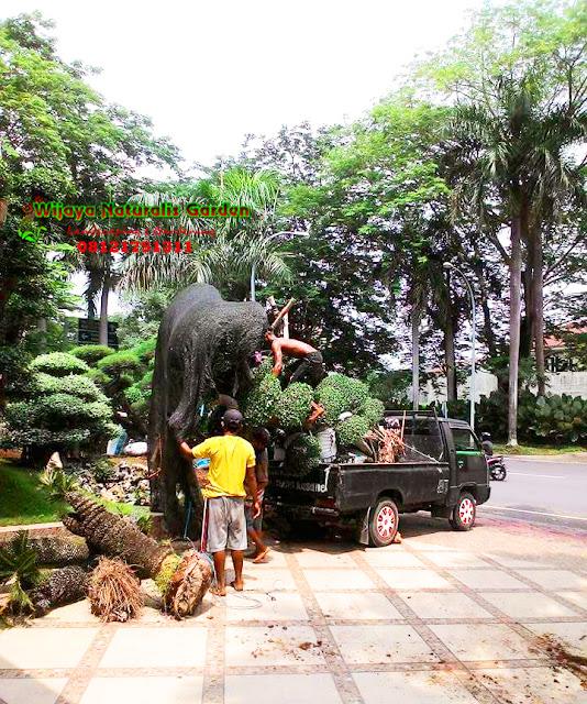 Tukang Taman Surabaya Barat, Tukang Taman Surabaya Murah,Tukang Taman Surabaya,Tukang Taman Surabaya dan Malang, Tukang Taman Surabaya Timur, Jasa Tukang Taman Surabaya