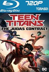 Teen Titans: El contrato de Judas (2017) BRRip 720p