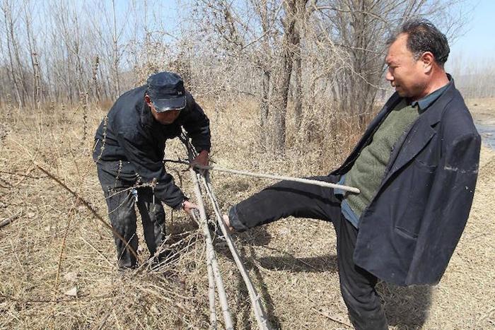 Слепой и безрукий посадили более 10 000 деревьев
