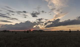 Camp Masai Mara, Kenia