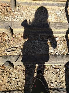 丸太階段を登る自分の影の姿