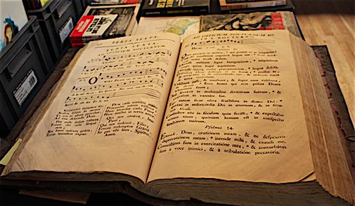 Nicole Bertin Infos Salon Du Livre Ancien De Jonzac Un