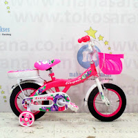 Sepeda Anak Evergreen Violet