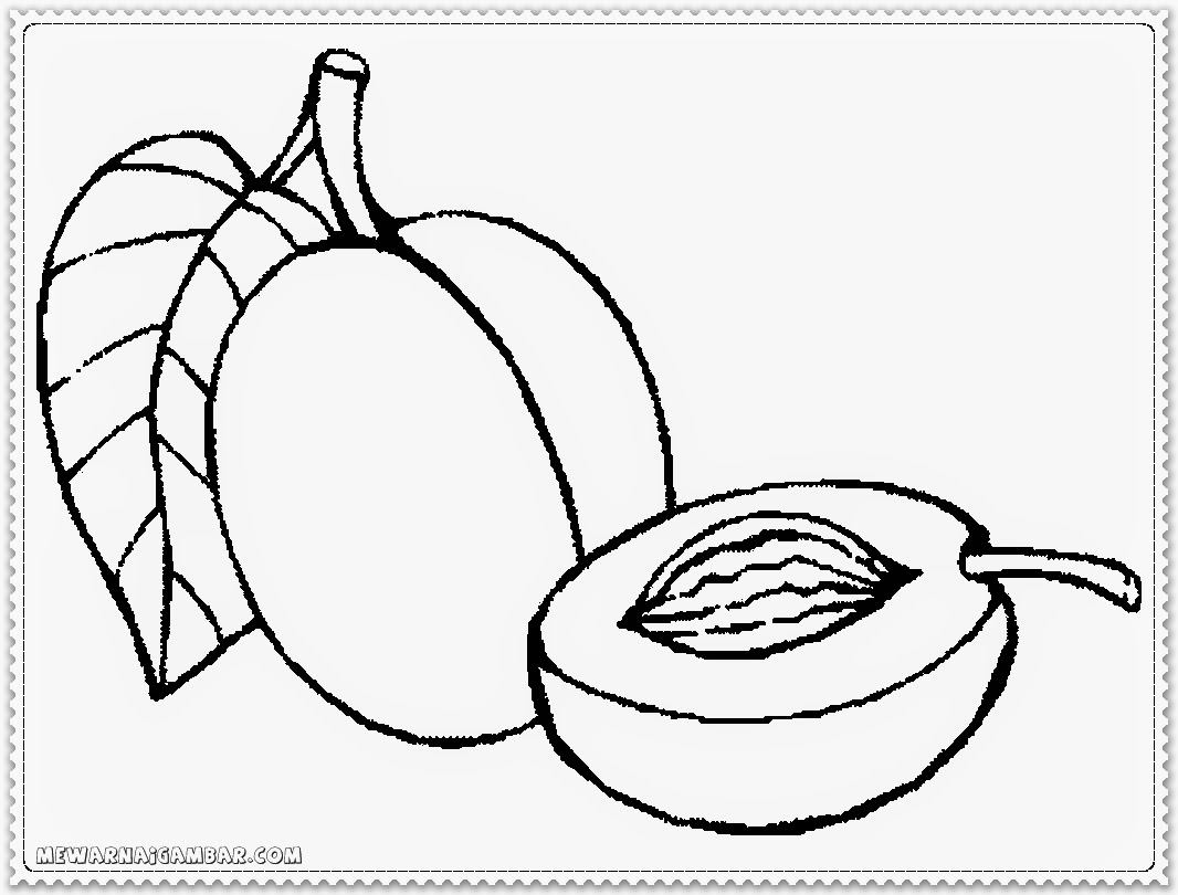 Apricots Fruit Free Printable Coloring Pages